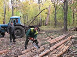Под руководством В.Б Ерузанова тракторист А.И. Власов и А.П. Куличков заготовят в этом году 800 кубометров древесины для населения маленьких деревушек